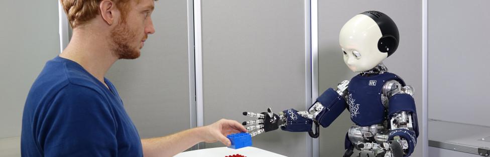 Humanoid Robot iCub